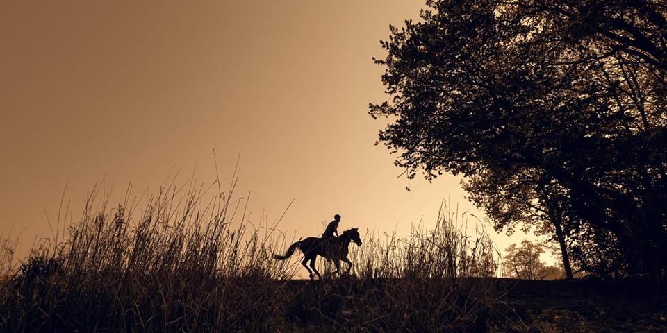 zdjęcie chłopca na koniu